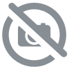 BUYING TCA PEEL ONLINE : MESOPEEL TCA MESOESTETIC